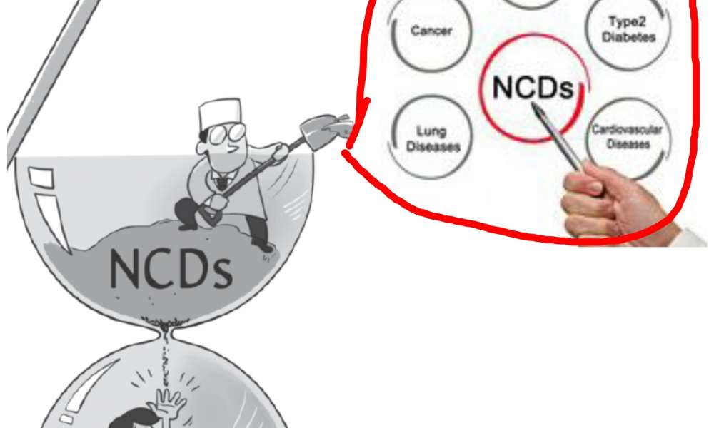 Investment Case For Non-communicable Diseases Prevention in Kenya